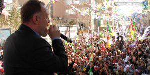 Newroz kutlamasına katılan Temelli: Rekoru Hakkari kırsın!