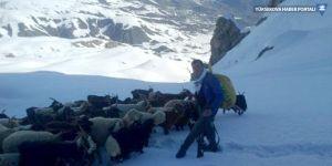 Hakkari'de besicilerin karda zorlu yolculuğu
