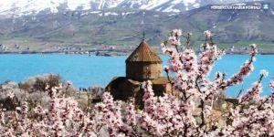 Akdamar Adası baharın renklerine büründü