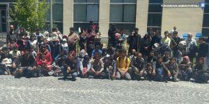 Başkale'de 90 göçmen yakalandı