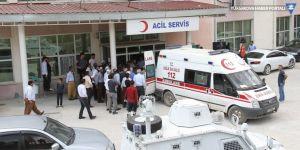 Şemdinli'de patlama: 2 çoban yaralandı
