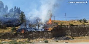 Esendere'de yangın: Üzüm bağı küle döndü