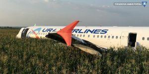 Kuş sürüsüne çarpan Rus yolcu uçağı mısır tarlasına acil iniş yaptı
