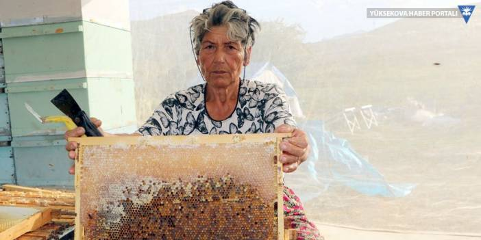 Muğlalı kadın arıcı, 27 yıldır Yüksekova'da arıcılık yapıyor