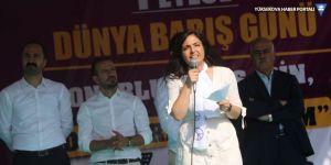 Özgökçe: Eşbaşkanlık HDP'nin en büyük armağanıdır