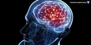 Uzayda mini insan beyni geliştirildi