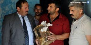 Çukurca'da poşette mantar üretimi yapıldı