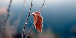 Kars eksi sekiz dereceyi gördü