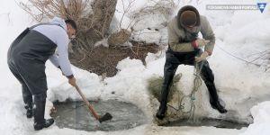Yüksekova'da Eskimo usulü balık avı
