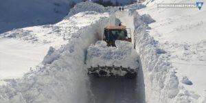 Hakkari ve Yüksekova'da 119 yerleşim yerinin yolu kapalı