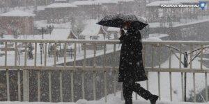 Şemdinli'de kar yağışı etkili oldu