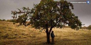 Türkiye sinemasının en iyi 30 filmi