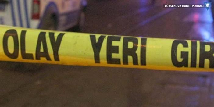 Cizre'de çocukların kavgasına aileleri de karıştı: 2 ölü, 12 yaralı