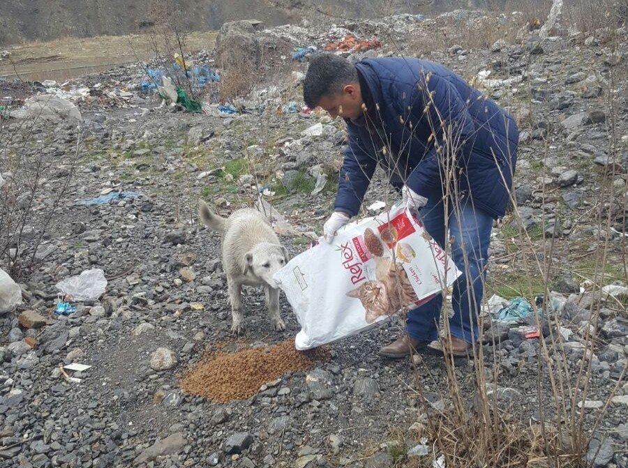 Hakkari'de sokak hayvanları için yem bırakıldı
