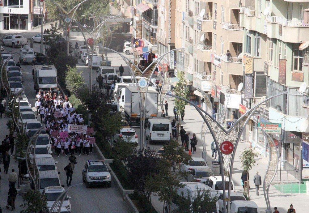 Hakkari'de meme kanseri farkındalık yürüyüşü düzenlendi
