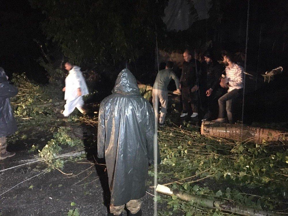 Beytüşşebap'ta ağaçlar devrildi, çatılar uçtu