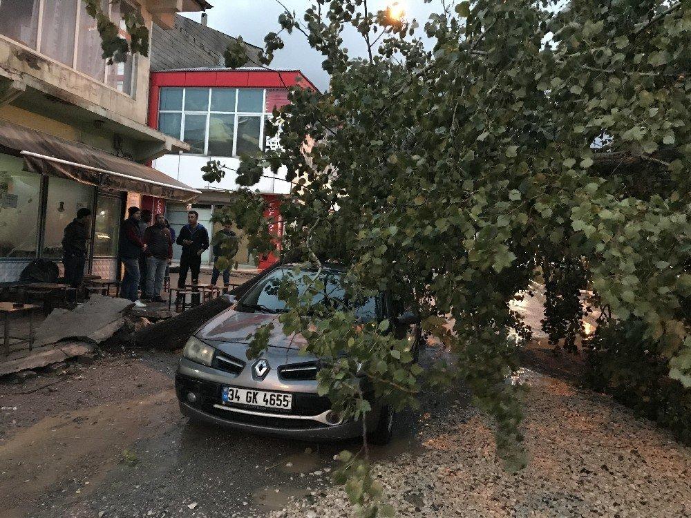 Muradiye'de etkili olan yağmur ve fırtına hayatı olumsuz etkiledi
