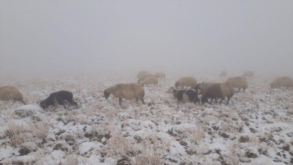 Başkale'nin yüksek kesimlere kar yağdı