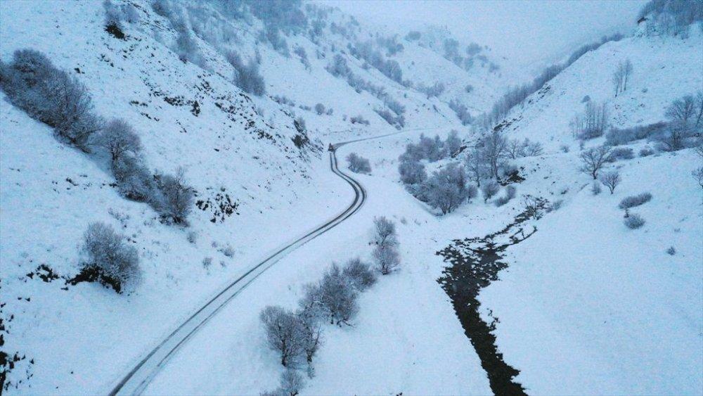 Hakkari, Van, Bitlis ve Muş'ta 821 yerleşim yerinin yolu ulaşıma kapandı