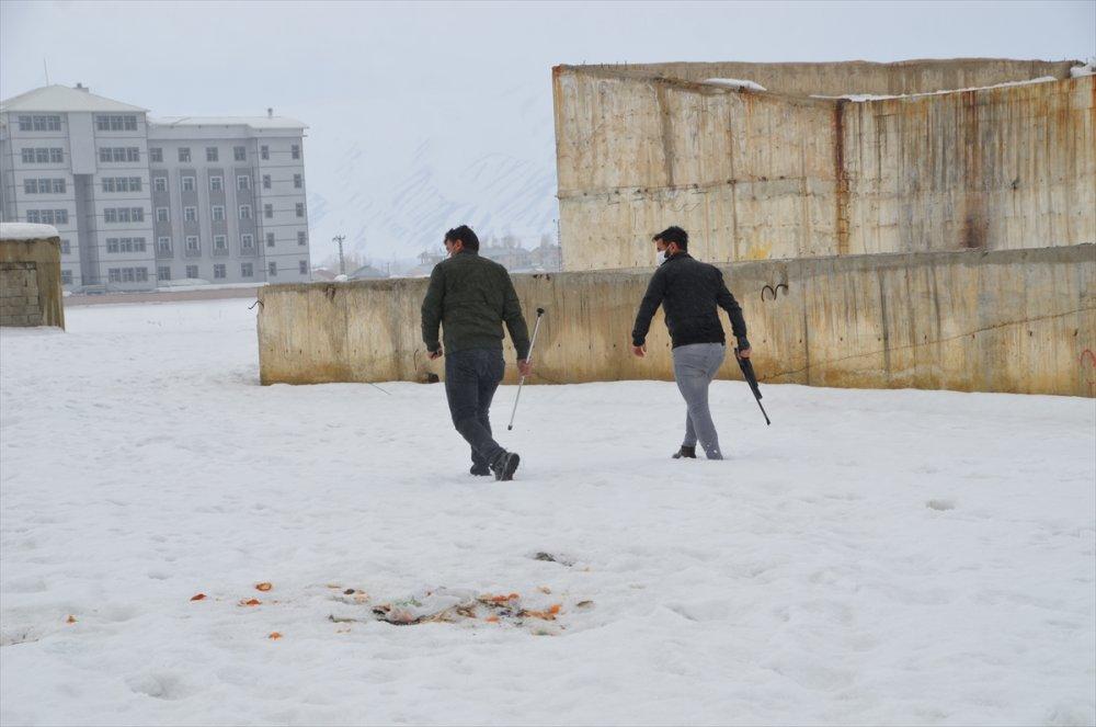 Yüksekova'da ilçe merkezine inen kurt için ekipler seferber oldu