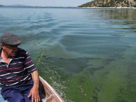 Bafa Gölü'nde Tehlike Çanları