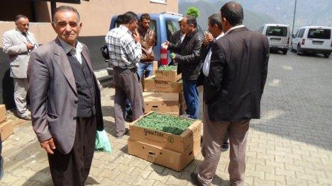 Hakkarili Çiftçilere Sebze Fidesi Dağıtıldı