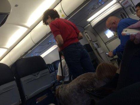Köpek pisleyince uçak acil iniş yaptı