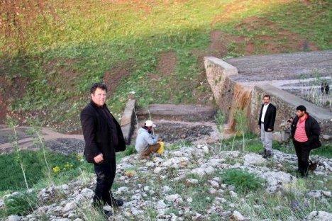 Muradiye'de Sele Kapılan Koyunlar Telef Oldu