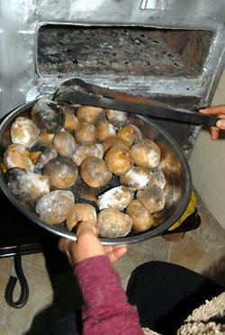 patates01.jpg