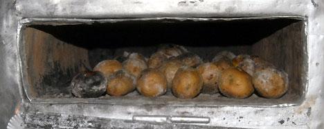 patates3.jpg