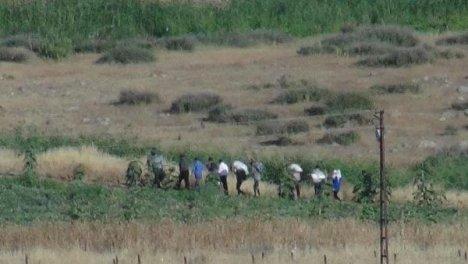Rojavalı Kürtler Dönüyor