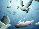 Bianet'ten 14 dilde 'barış' temalı video
