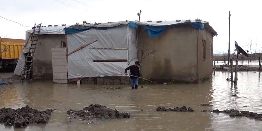 Yüksekova'da birçok ev ve iş yerini su bastı