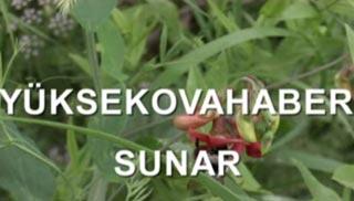 Hakkari-Yüksekova Meydanbelek Yaylası